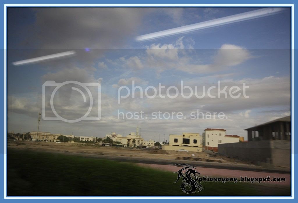 photo Picture26_zps8dv7uc7c.jpg