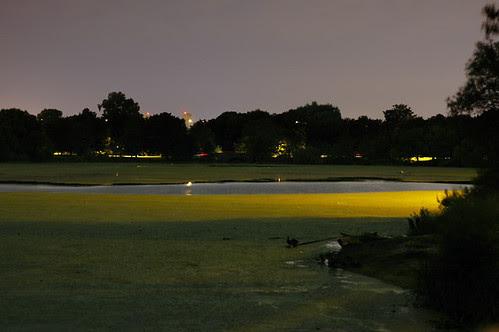midnight at the lakes 3 web.jpg