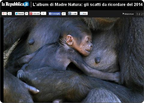 http://www.repubblica.it/ambiente/2014/12/17/foto/natura_animali_fotografie_pi_belle_2014-103118233/1/?ref=HRESS-5#1