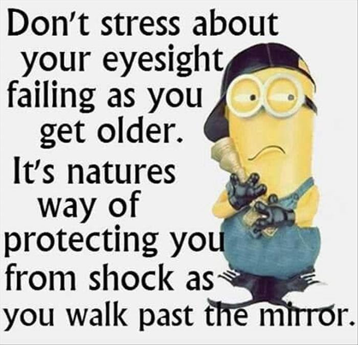 Funny Minions Dump A Day