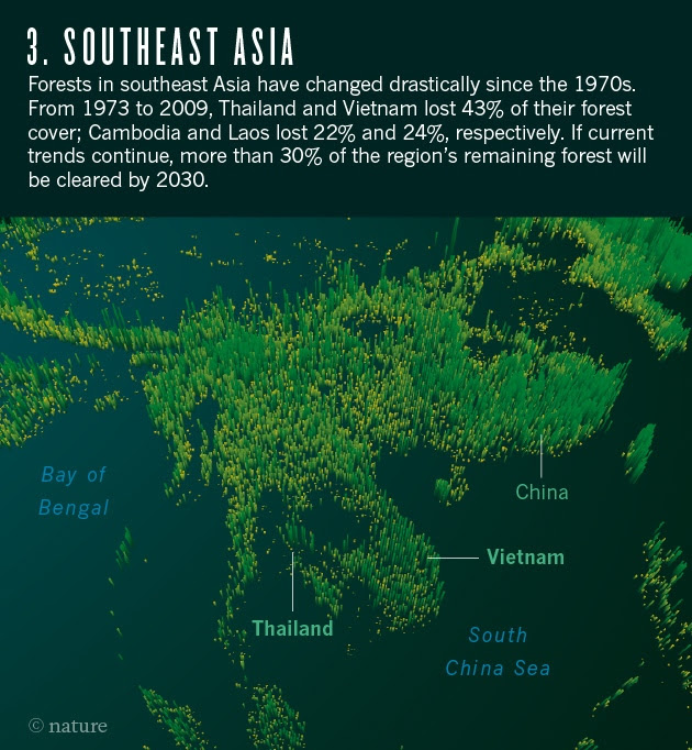 Declining forest area in South East Asia. Photo credit: Nature.com