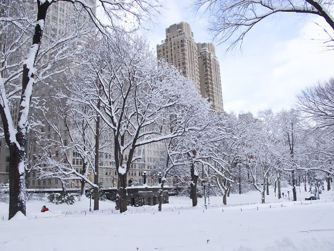 Snow, Central Park