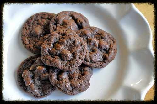 Double-Chocolate-Dream-Cookies