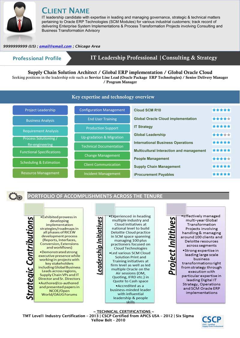 IT Leadership Visual Resume