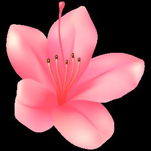 サツキの花5 花植物イラスト Flode Illustration フロデイラスト