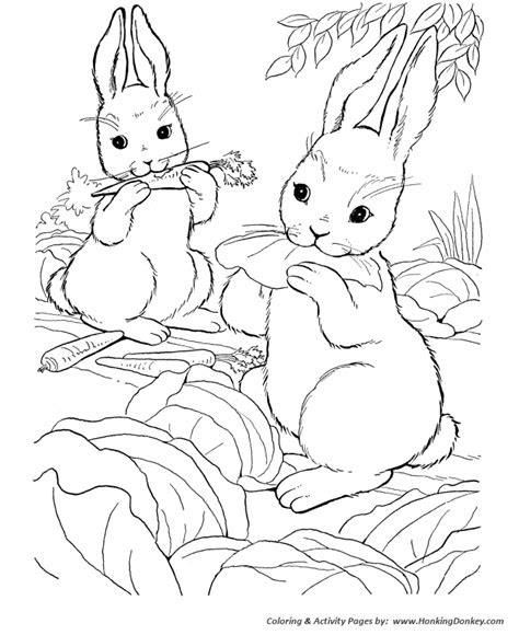 coloring pages  pinterest kids coloring pages