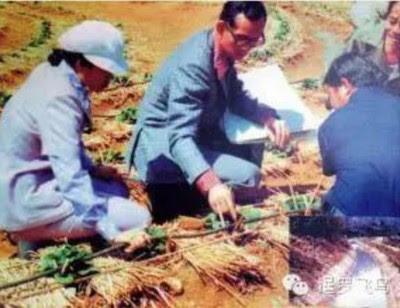 普密蓬曾大力在乡村推动农业及水利发展,使国家进一步迈向现代化。