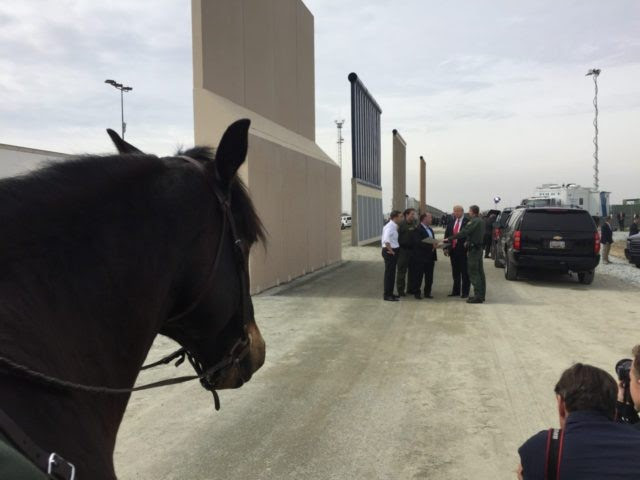 Horse at border wall prototype (Joel Pollak / Breitbart News)