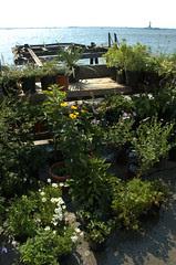 Liberty Sunset Garden Center
