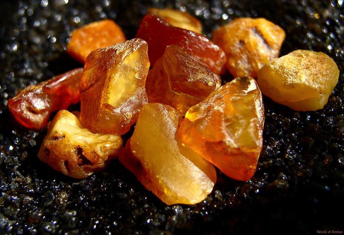 Baltic Amber Stones