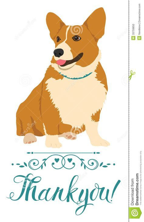 Thank You Card With Dog Stock Photo   Image: 33759850