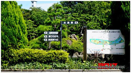 品川水族館09.jpg