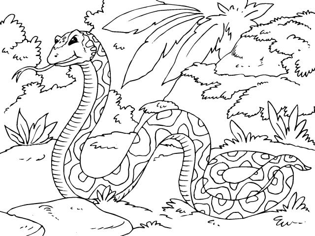 Dibujos Animados De La Selva Para Colorear Imagui