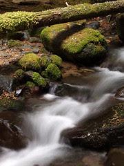 Cascade on Goat Creek