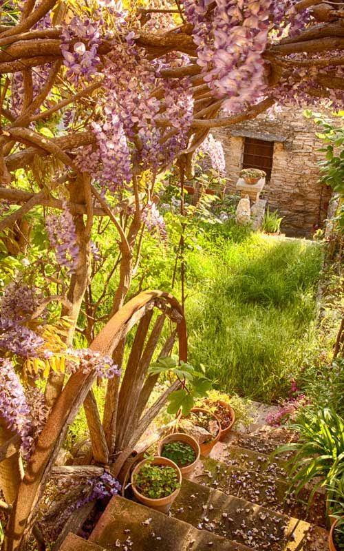 fairytale garden & rustic house