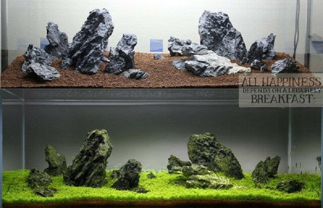 Aquascaping Rocks For Sale - Aquascape Ideas