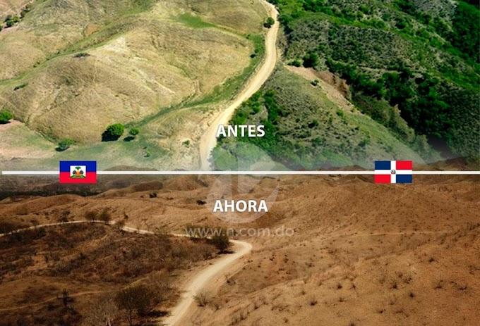 DEFORESTACIÓN ARRASA BOSQUES PEDRO SANTANA-HAITÍ Y REDUCE DRAMÁTICAMENTE EL ARTIBONITO