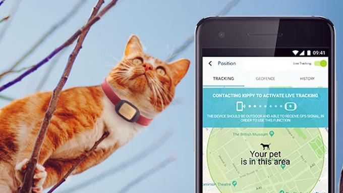 V-Pet para tener controlada a la mascota