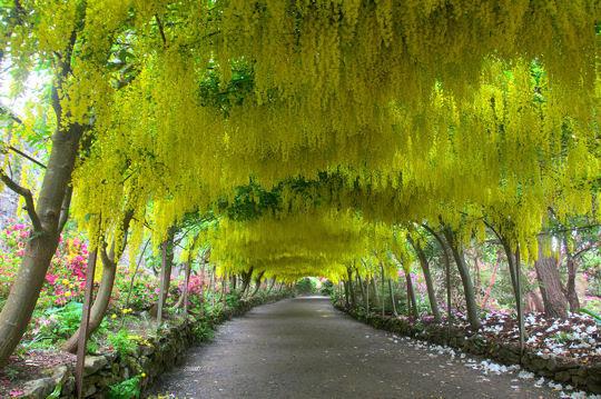 Visitez Les Plus Beaux Parcs Et Jardins En Dordogne