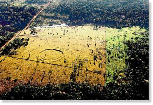 geoglifos en Amazonia 2