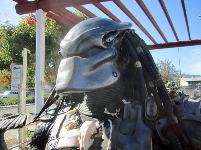 Yard Sale Predator Closeup