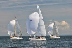 J/27s sailing downwind under spinnaker