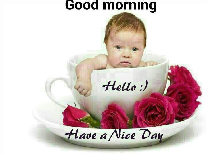 Good Morning Hello Have A Nice Day Pictures Photos And Images For