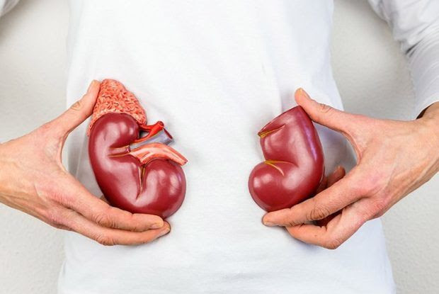 Do You Have a Kidney Infection? | LifeDaily