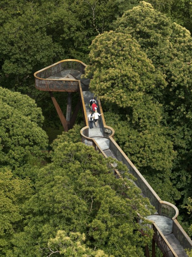 Tree top walkway at kew gardens