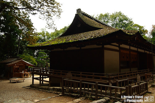 2011Kyoto_Japan_ChapTen_16
