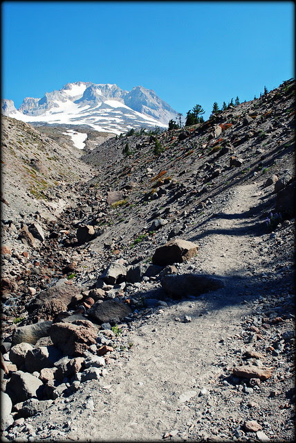 Little Zigzag Canyon along the Timberline Trail / PCT headed to Paradise Park