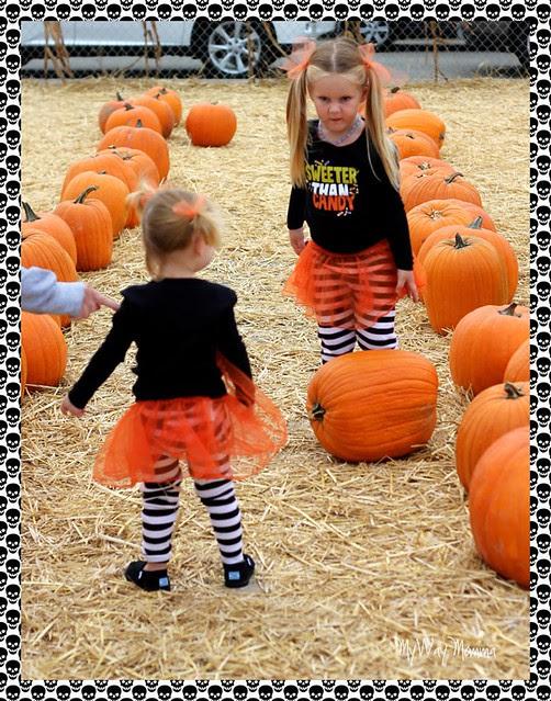 Pumpkin Patch October 2012 123