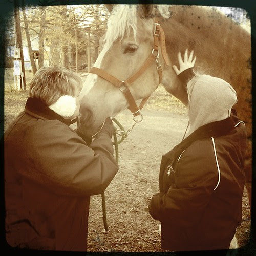 Kissing A Belgian