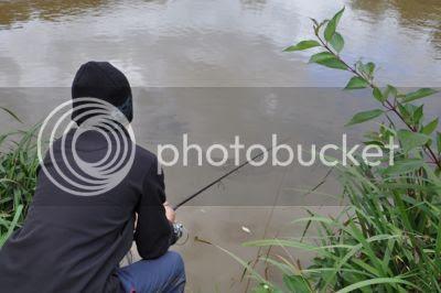 photo DSC_0076_zpsa03e6e87.jpg