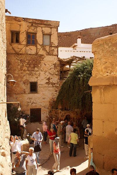Archivo: Rubus sanctus zarza ardiente en monasterio de Santa Catalina-vert.jpg