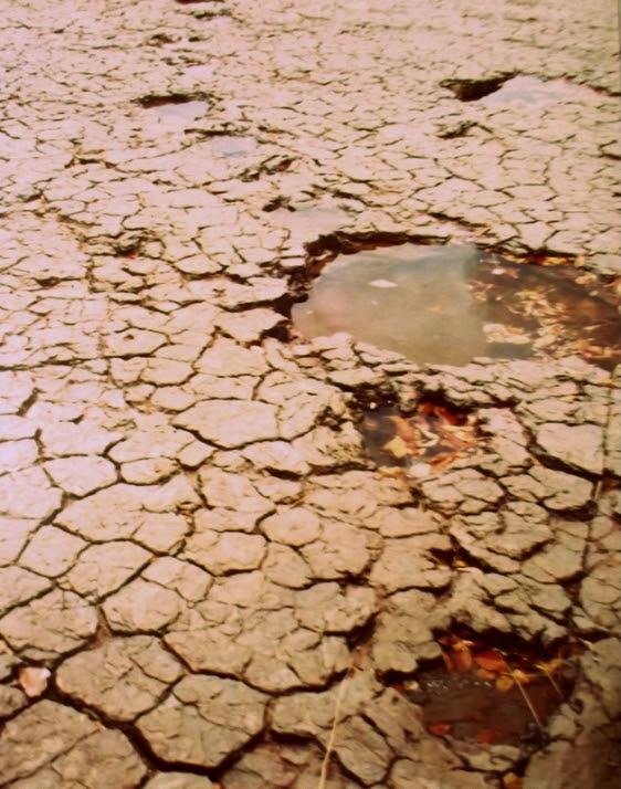 Foto de uma das trilhas feitas pelos dinossauros em Sousa, realizada pelo autor do blog TOK DE HISTÓRIA em 1994