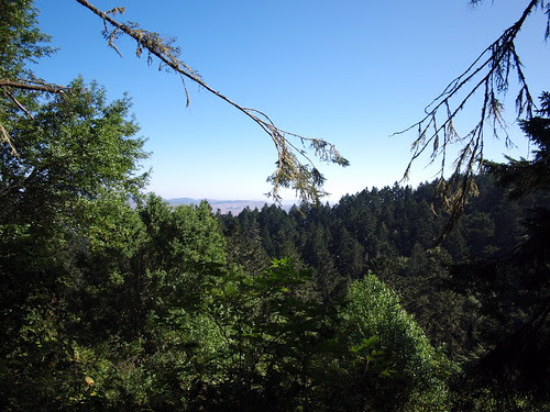 View from Sky Trail