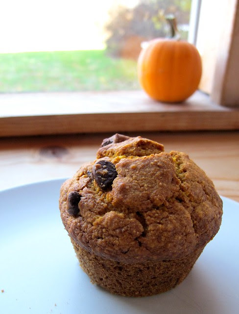 pumpkin muffins with secret powers