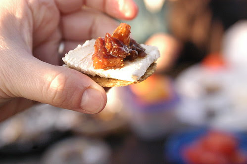 fig and ginger chutney on cheese