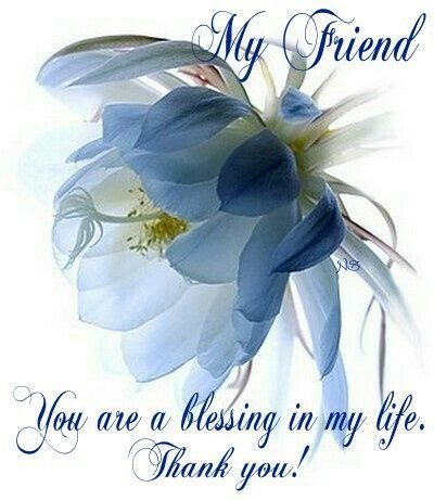 My Friend You Are A Blessing In My Life Pictures Photos And Images