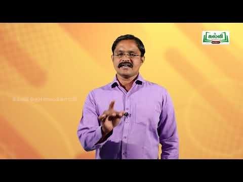 10th English Singular - Plural  Unit 2 Kalvi TV