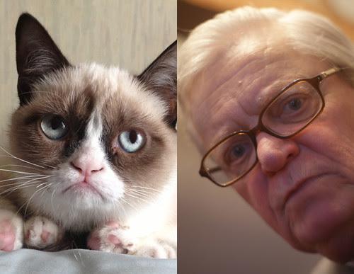 My Uncle Looks Like GrumpyCat
