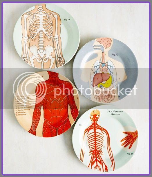 human-anatomy-plates-001.jpg