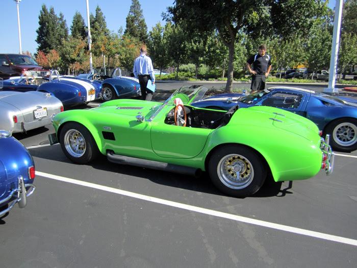 Cobra 042
