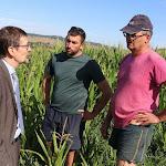 Auxois-Morvan. Sécheresse : les agriculteurs au bord de la crise de nerfs
