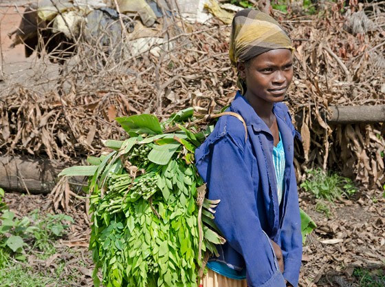 Uma jovem da etnia Ari chega com um carregamento de folhas de moringa nas costas (Foto: © Haroldo Castro/Época)