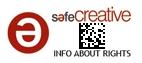 Safe Creative #1105290026101