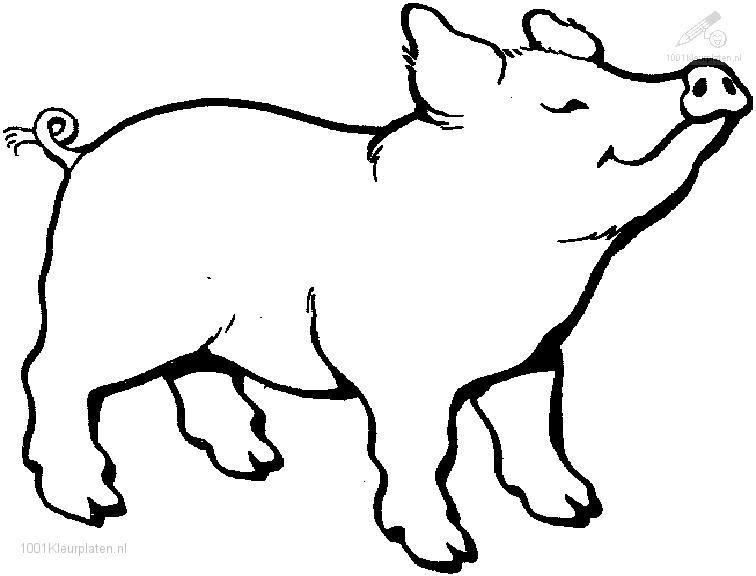 Sélection De Coloriage Cochon à Imprimer Sur Laguerchecom Page 3