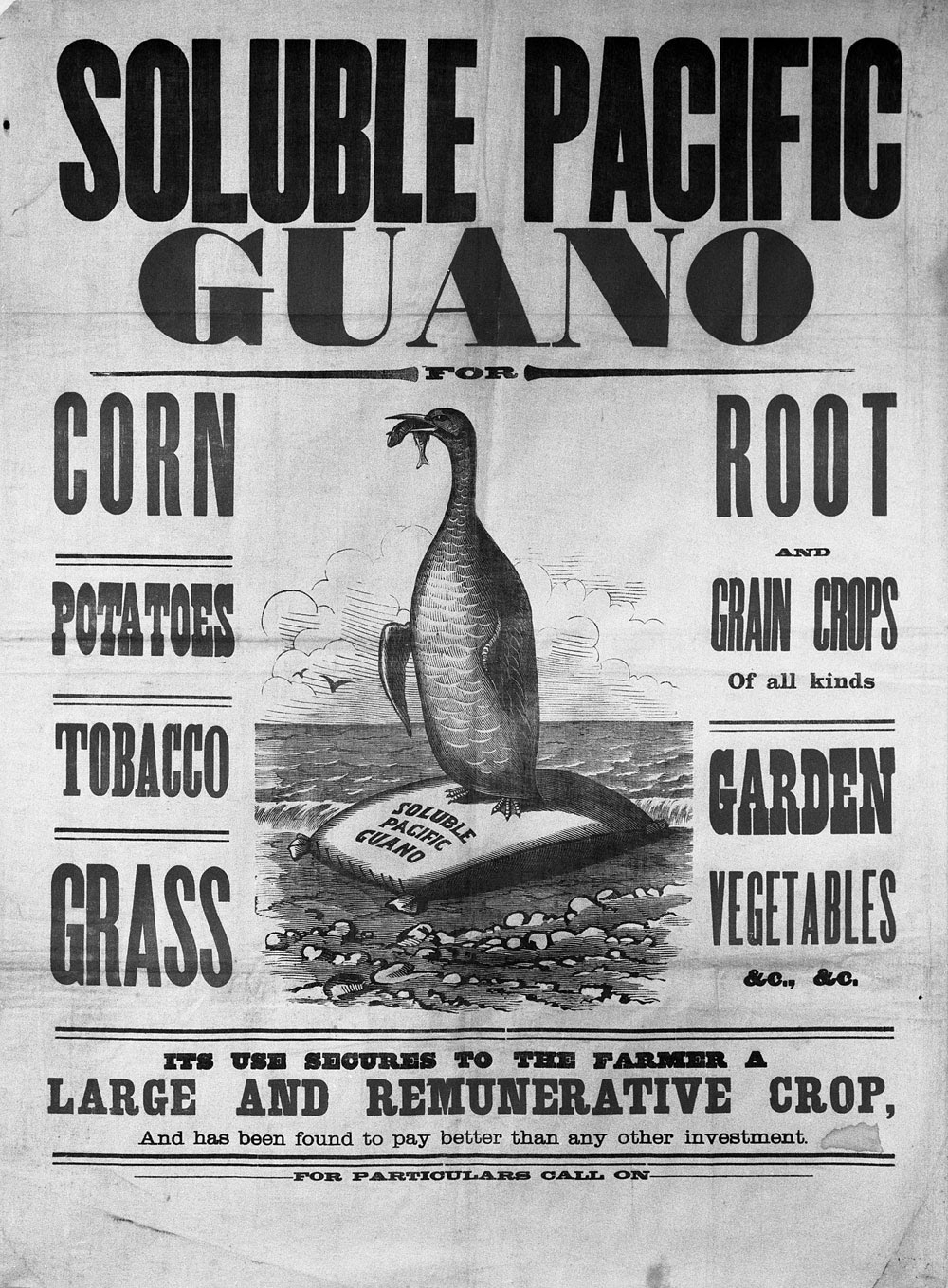 Soluble Pacific Guano, 1857-83. Courtesy of Mystic Seaport, Mystic, Conn., #1994.5.