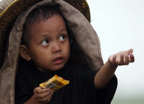 The UN report says that the number of malnourished people has grown rapidly.
